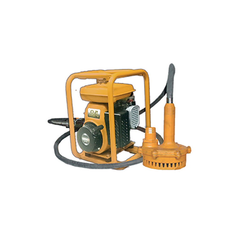 Stampa    Submersible Pump   TPP-2 with 6M Hose-  Ace Machinery